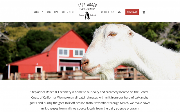 Screenshot of Stepladder Creamery website